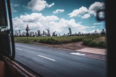 Grünes Tansania