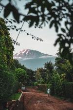 Der Kilimanjaro ausnahmsweise mal nicht in Wolken gehüllt