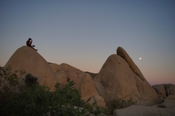 Joshua Tree Nat. Park